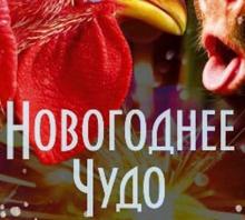 Открыта продажа в цирк Одессы